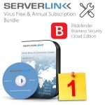 ServerLink 01 User with Annual Subscription & Bitdefender