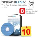 ServerLink 10 User with Annual Subscription & Bitdefender